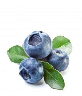 Wild Blueberry (30ml)